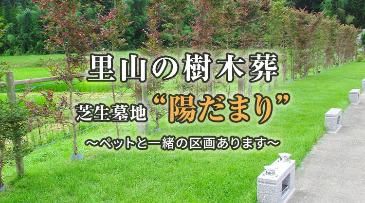 里山の樹木葬 芝生墓地・陽だまり