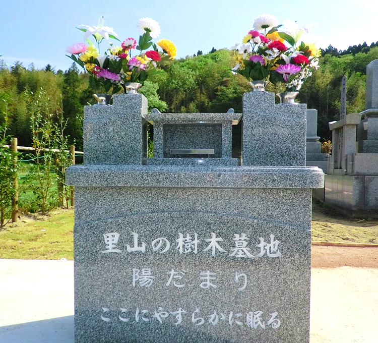 樹木墓地01