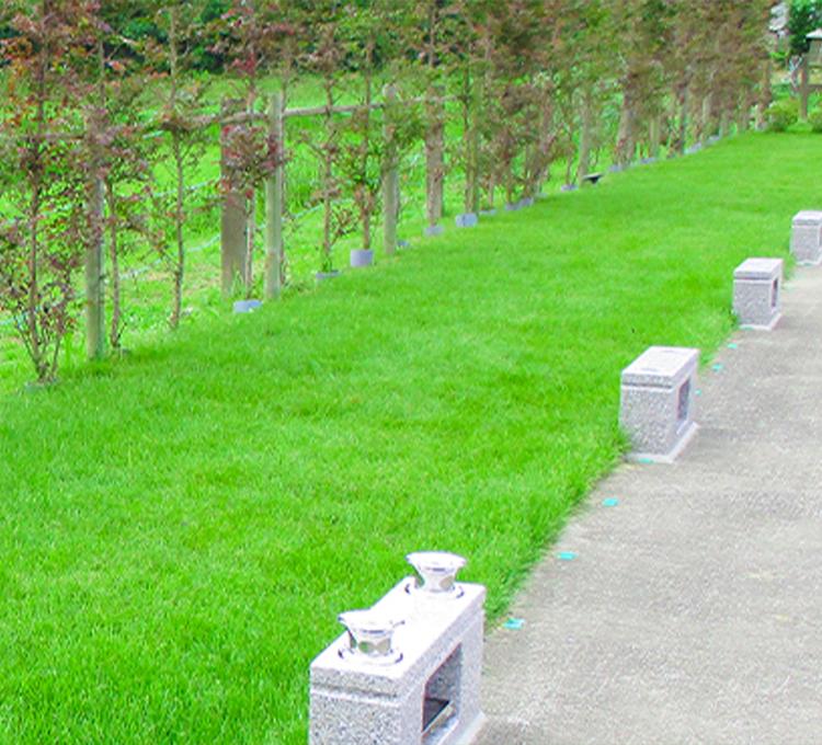 樹木墓地02
